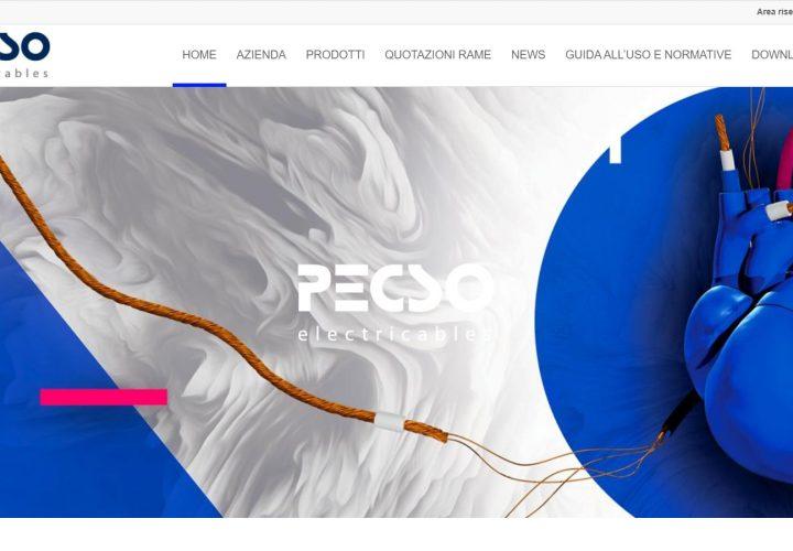 Sito web – Pecso